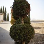 Italy Travel - by Lichtgrün - Design & Photo, Linda Mayr - Mondsee