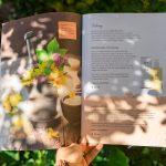 Drucksorten, Folder, Gutschein, Wanderkarte - by Lichtgrün - Linda Mayr Mondsee